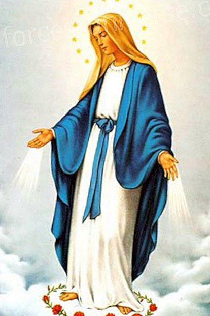 """The Sacred Sign on their foreheads """"Immaculate Mary- Messages from Heaven -"""