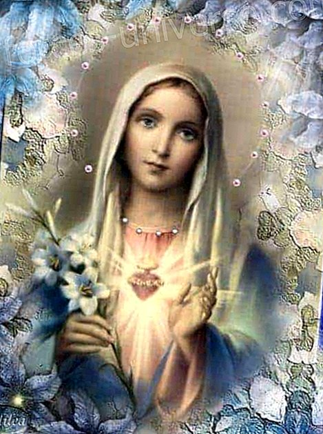 Message from Mother Mary: Many wounds need to be healed now.  Channeled on July 30, 2017