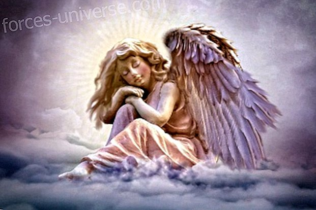 Message from the Angels: Love is our new reality
