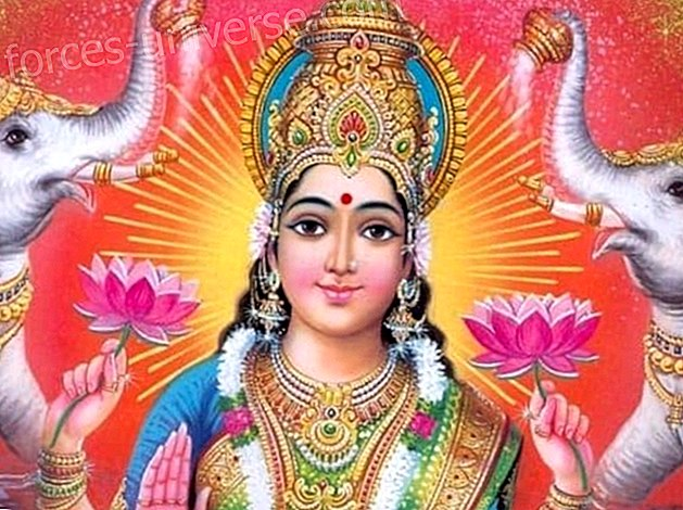 Mother Lakshmi: The awakening of Inner Wealth, abundance, love and fulfillment