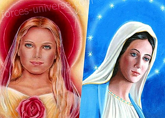 Message from Mary Magdalene: You must take care of the children of the earth