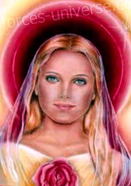 Luxúria i Amor. Canalització de Maria Magdalena, per Pamela Kribbe - Missatges del Cel