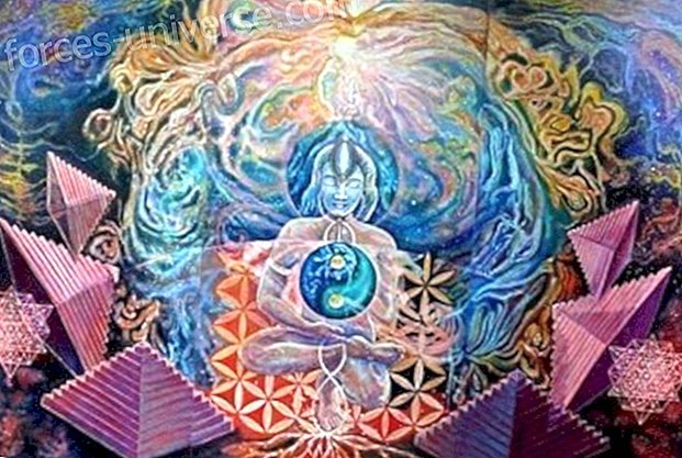 Divine Mother Message: The restoration of the genetic heritage of the fields