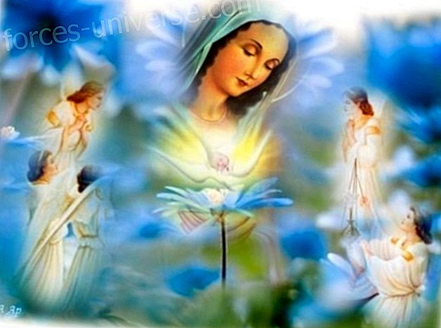 Message from Mother Mary: Your body is full of energy and vibration