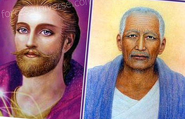 San Germain's heavenly message: The animal, plant and mineral kingdom will generate a great change in the human kingdom