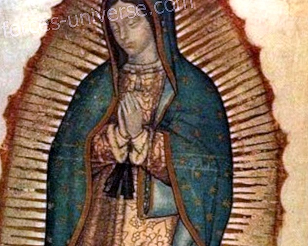 Do you know the Miracle of the eyes of the Mother of Guadalupe?  Know it, it's extraordinary!