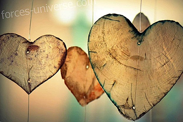 Love: Reflections on the power of love as a paradigm of life and communion with the universe