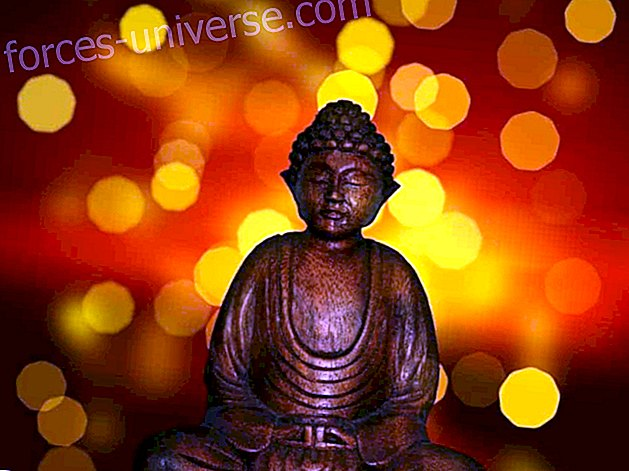 Lord Buddha ~ Re-coding time