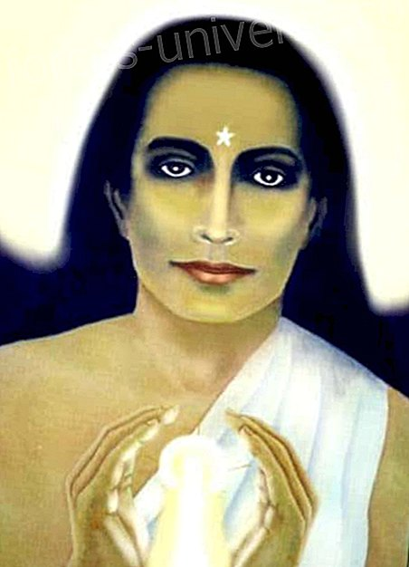 "Babaji's message: ""Start moving,"" by Jahn Kassl"