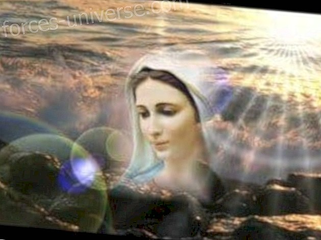 Message from Mother Mary: Your Mother loves you and blesses you