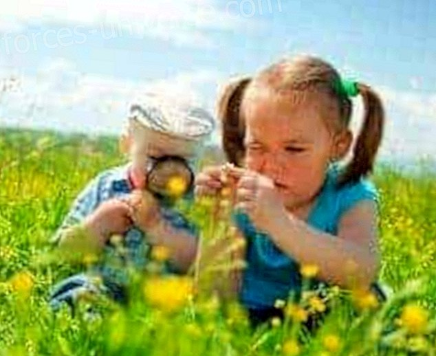 Lasten tulisi aloittaa oppimisprosessinsa luonnossa, ei luokkahuoneessa