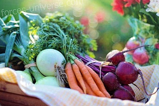 What is the alkaline diet and what are its benefits