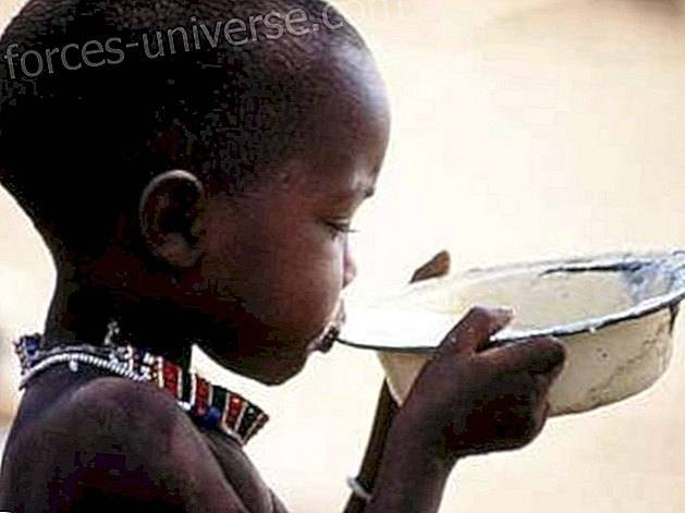 REC3     World energy service to help in the hunger crisis in Africa - Spiritual World