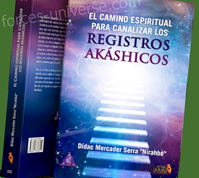 """New book by Didac Mercader: """"The spiritual path to channel the Akashic Records"""" Professionals 2021"""