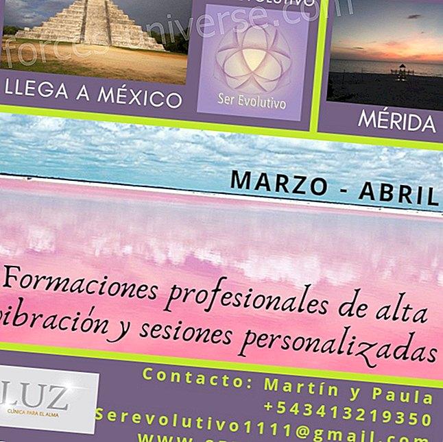 Korkean tärinän omaava ammatillinen koulutus ja henkilökohtaiset istunnot - Being Evolutionary - Mérida Mexico - maaliskuu 2019