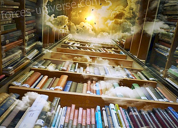 Self-training online course: Learn to read Akashic Records, by Mnica Roset