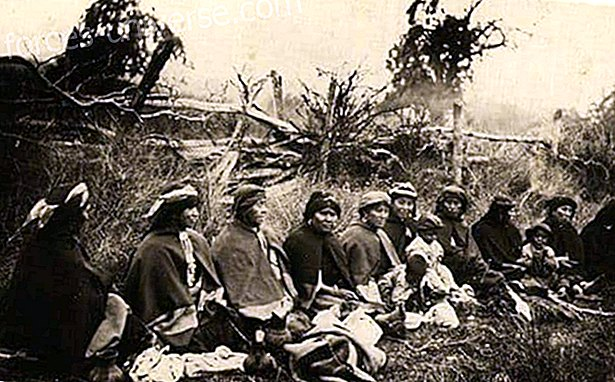 The Mapuche Indians - Indigenous Wisdom - Wisdom and knowledge