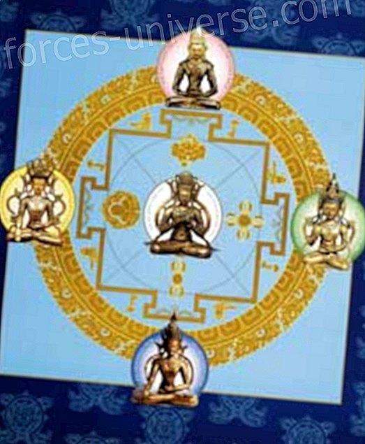 Viisi buddhaa Dhyani - Viisautta ja tietoa