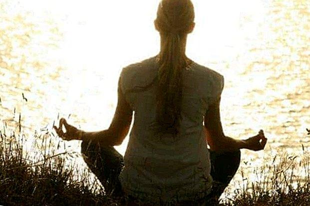 Shambhala Santiago de Chile Meditationszentrum: Willkommen zum Meditieren - Weisheit und Wissen