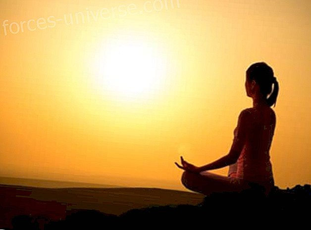 Yoga, Philosophy of Life and Transcendence of the Self