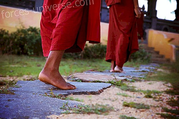Sayadaw U Kundalabhivamsa: Note from this great teacher on the practice of Walking Meditation (Part 3)