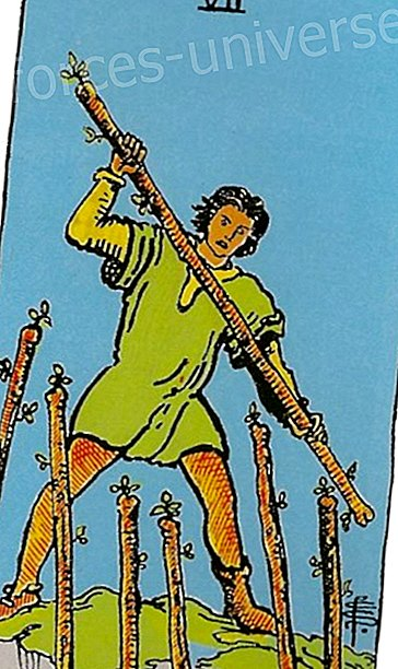 The Tarot, The Seven of Wands - Wisdom and knowledge