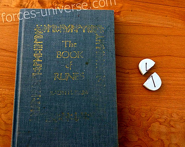 Runa Algiz: Mythological legend and meaning of the ancient Viking runes
