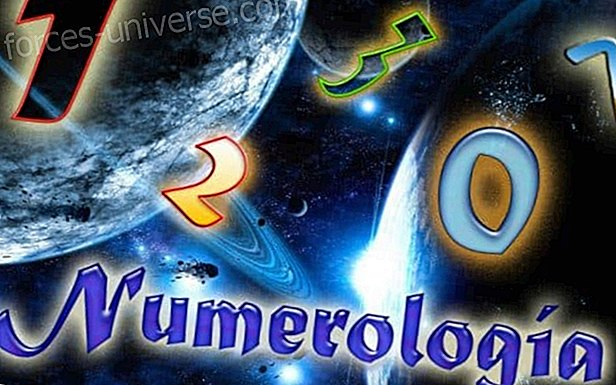 Discover the important meaning of numerology in your life Wisdom and knowledge