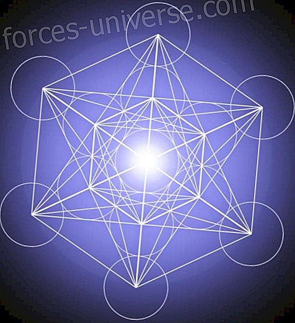 Sacred Geometry and the Origin of Life - Wisdom and knowledge