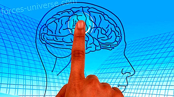 The power of your mind, learn some Neurolinguistic Programming techniques
