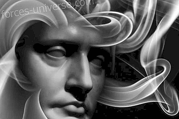The immortality of the soul in history