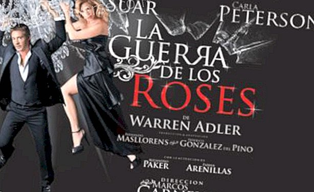 The War of the Roses: A Story of Attachment and Dislike