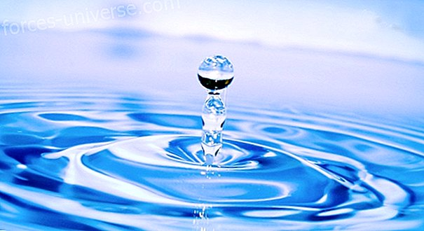 Water, Your Great Ally